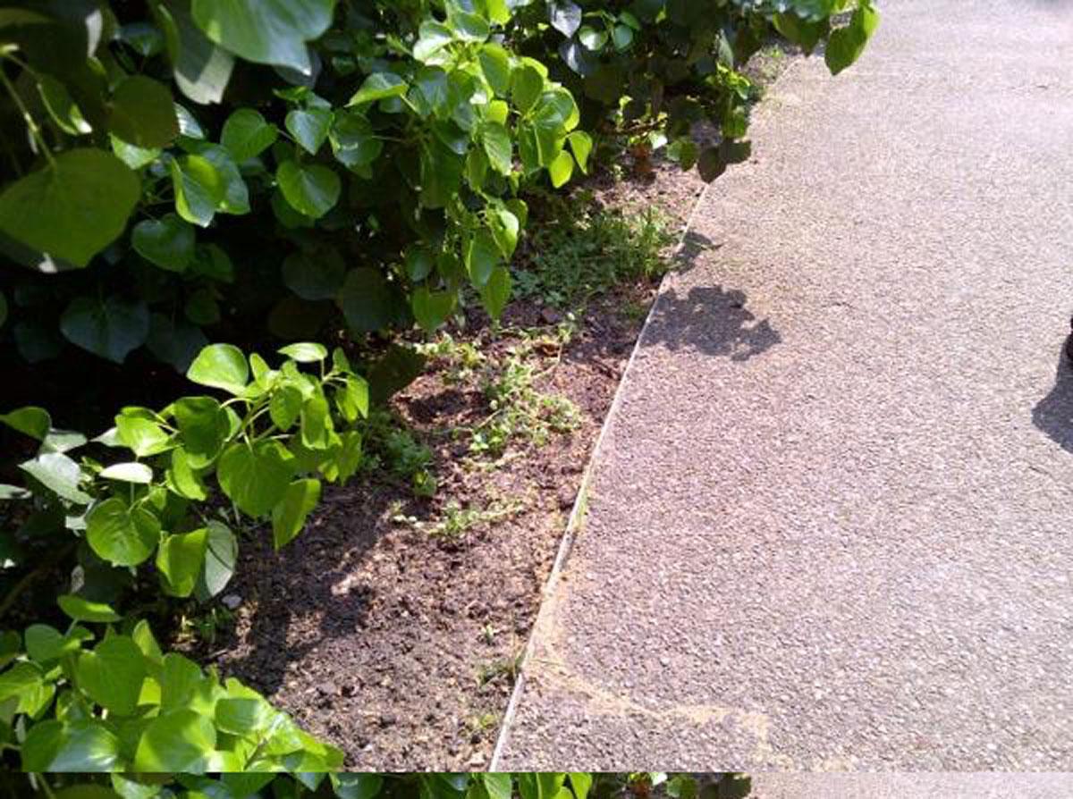 Umacnianie chodników z obrzeżem AluFlex