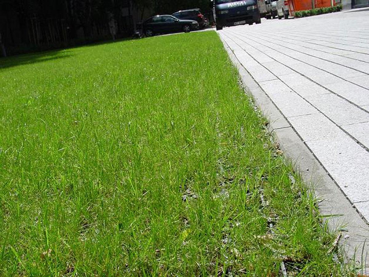 Jezdny EcoGreen = EcoRaster i trawa to wysokiej jakości, urbanistyczne elementy do kształtowania przestrzeni miejskiej